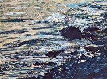 DillonC-202105-SwanLake-rocks.water-16x12-500