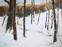 Anderson_K_2021-wintercreek