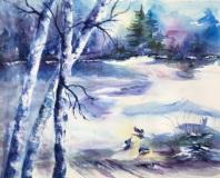 Winter Beauty NFS