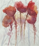 Spirited Poppies